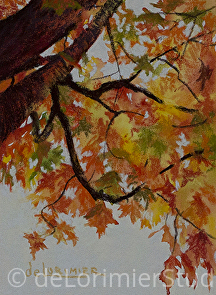 "Autumn Glow by Cathy de Lorimier Pastel ~ 7.5"" x 5.5"""