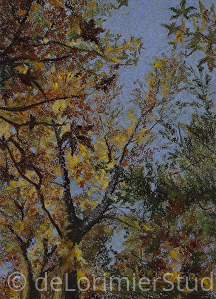 "Changing Colors by Cathy de Lorimier Pastel ~ 7.5"" x 5.5"""