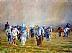 In the Field by Don Judah