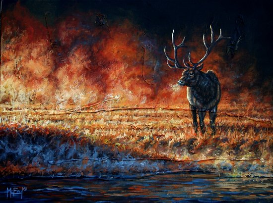 """Regal Riverbank"" - Elk - Acrylic"