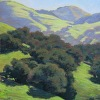 Green Hills and Oaks