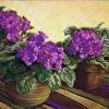 Multiplying Violets