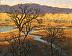 Oaks Bottom Wetlands by Dotty Hawthorne