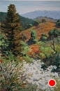 Tassajara Canyon Recovery by Dotty Hawthorne Pastel ~ 23 x 18 (framed)