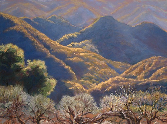 Morning in Los Padres Forest - Original Pastel & Giclee Reproductions