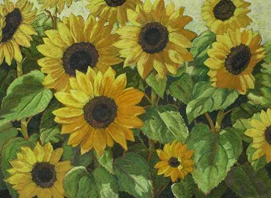 Avila Sunflowers - Pastel