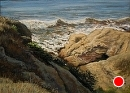 Ocean Cliffs in Light and Shadow by Dotty Hawthorne Pastel ~ 11.5 x 15.5
