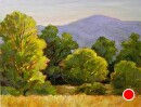 """Sun Kissed by Dotty Hawthorne Oil ~ 11 x 14"