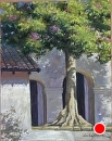Silk Floss Tree at the Mission by Dotty Hawthorne  ~ 14 x 11
