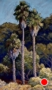 Three Palms by Dotty Hawthorne Pastel ~ 38 x 27.5 (framed)