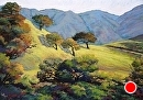 Four Oak Focus by Dotty Hawthorne Pastel ~ 29.5 x 20.5