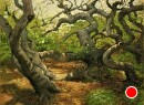 Pygmy Oaks in Elfin Forest by Dotty Hawthorne Pastel ~ 11 x 15