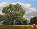 Evening Light on Old Oak by Dotty Hawthorne Oil ~ 11 x 14