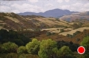 Adelaida Road View by Dotty Hawthorne Pastel ~ 25 x 33