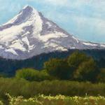 Dotty Hawthorne - Mt. Hood Perspectives