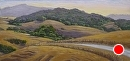 Down Turri Road by Dotty Hawthorne Pastel ~ 10 x 22