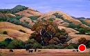 Coastal Hills by Dotty Hawthorne Pastel ~ 11 x 18
