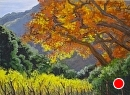 Fall in the Canyon by Dotty Hawthorne Pastel ~ 13 x 18