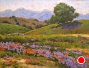 Wildflower Jubilee by Dotty Hawthorne Pastel ~ 16 x 21
