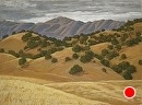 Golden Hills of Chimineas Ranch by Dotty Hawthorne Pastel ~ 16 x 22