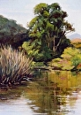 Laguna Lake Reflection by Dotty Hawthorne Oil ~ 9 x 12