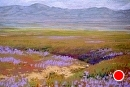 Spring Magic on the Carrizo Plain by Dotty Hawthorne Pastel ~ 11 x 15