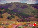 Caliente Range in Spring by Dotty Hawthorne Pastel ~ 16 x 22