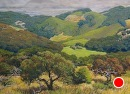 Balm Ridge View by Dotty Hawthorne Pastel ~ 16.5 x 22