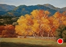 Sycamores in Fall by Dotty Hawthorne Pastel ~ 15.5 x 22