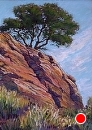Lone Oak on Trailside Cliff by Dotty Hawthorne Pastel ~ 24 x 18 (image)