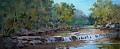 FALL CREEK-Camp El Tesoro, Granbury,TX by Tina Bohlman Oil ~ 10 x 24