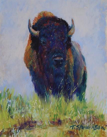 Bison Overlook - Pastel