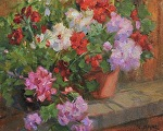 Geranium Splash by Carole Mayne Oil ~ 8 x 10