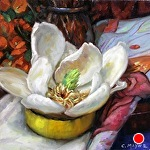 Magnolia by Carole Mayne Oil ~ 6 x 6