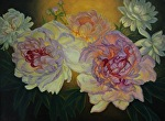 Illuminate by Carole Mayne Oil ~ 18 x 24