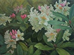 A Treasure of Spring by Carole Mayne Oil ~ 18 x 24