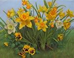 Rising by Carole Mayne Oil ~ 16 x 20