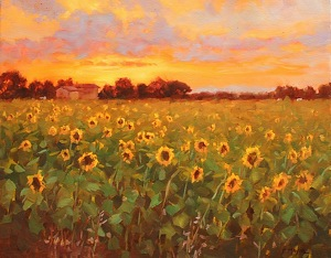 Sun Flowers by Carole Mayne Oil ~ 16 x 20