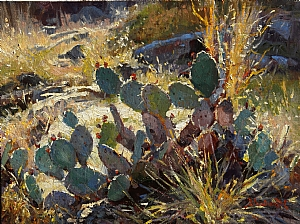 Cactus Color by Mark Haworth Oil ~ 9 x 12