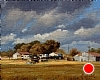 Texas Rural by Mark Haworth Oil ~ 8 x 10