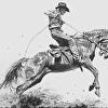 """ Wild Horse Race """