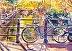 Amsterdam Bike by Joyce Kanyuk