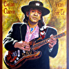 SRV , Rock and Roll Hall of Fame 2015