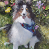 Junior Among The Flowers