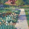 May Garden Irises