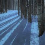 Jake Gaedtke - Close To Nature's Heart