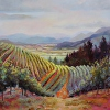 Vineyards and Beyond