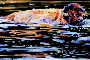 """Swimming The Madison"" by Debbie Edgers Sturges Acrylic ~ 16""x x 24"""