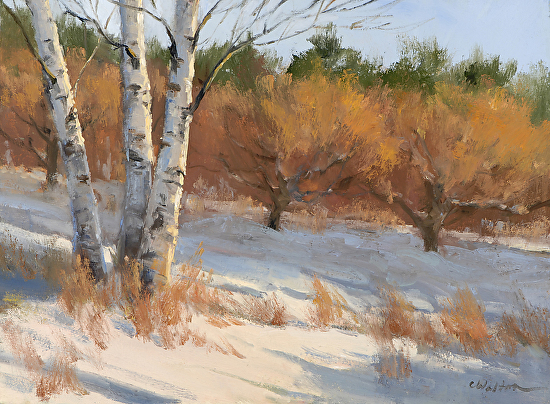 Birches in Winter - Oil