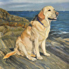 Portrait of Maggie the Yellow Lab